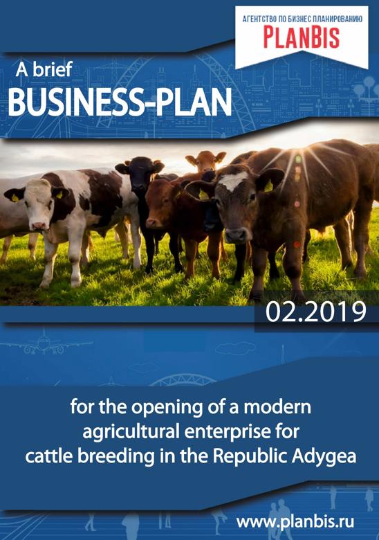 Бизнес-план по разведению КРС в Республике Адыгея