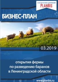 Бизнес-план по разведению баранов и овец для продажи мяса, шерсти, молока в Ленинградской области
