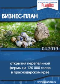 Бизнес-план по разведению перепелов 120 тыс. голов на мясо и яйца в Краснодарском крае